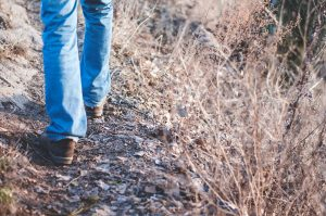 An image of someone's legs, walking through a field. The person is wearing jeans and it is unclear if it is a man or woman. Going for a walk is a means of self care, suggested by Anne Russey Counseling. Anne Russey provides counseling services and therapy in Katy, TX. Anne offers postpartum depression treatment, postpartum anxiety treatment, counseling for moms, LGBTQ counseling and anxiety treatment in West Houston.